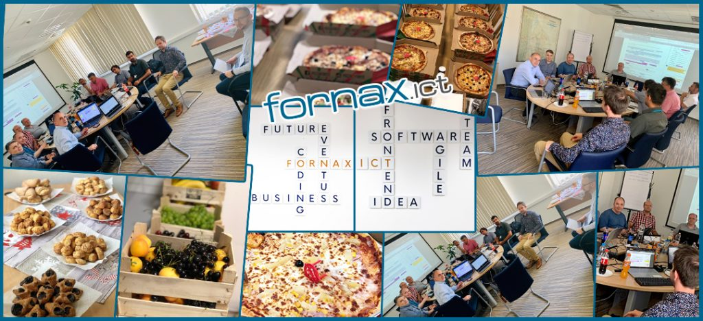 Fornax professional  workshop with the NMHH