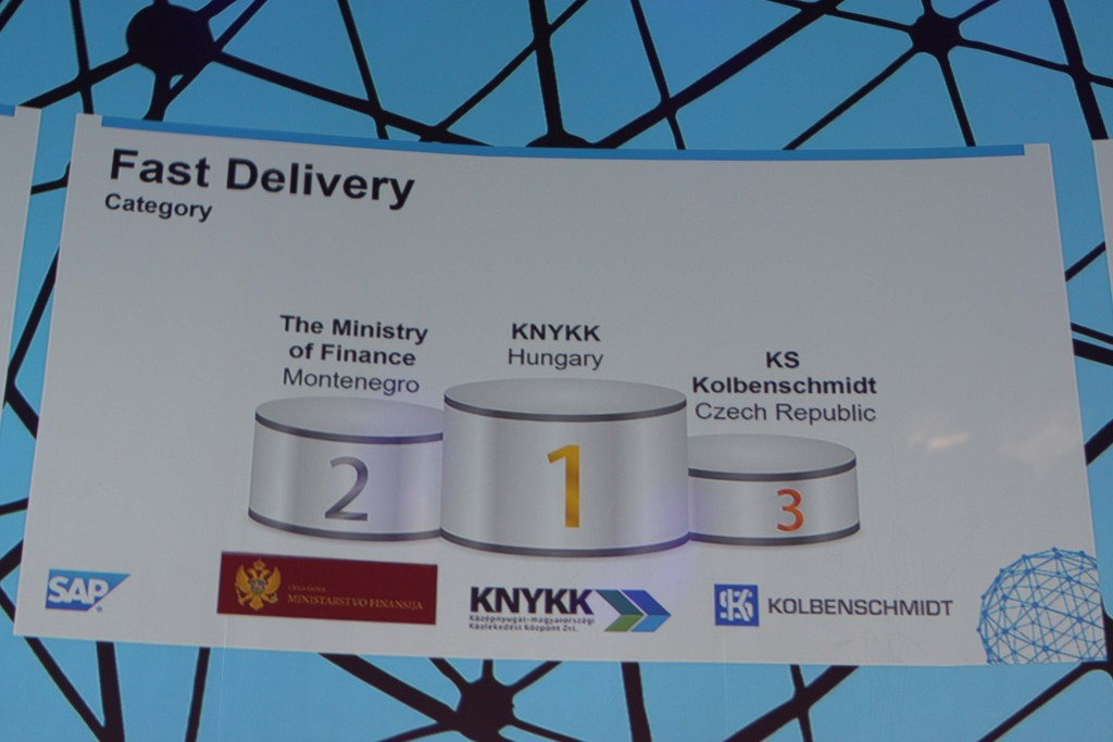 Central-Eastern-European SAP Quality Awards Competition – The project of MHTC and Fornax SI is a Gold Winner