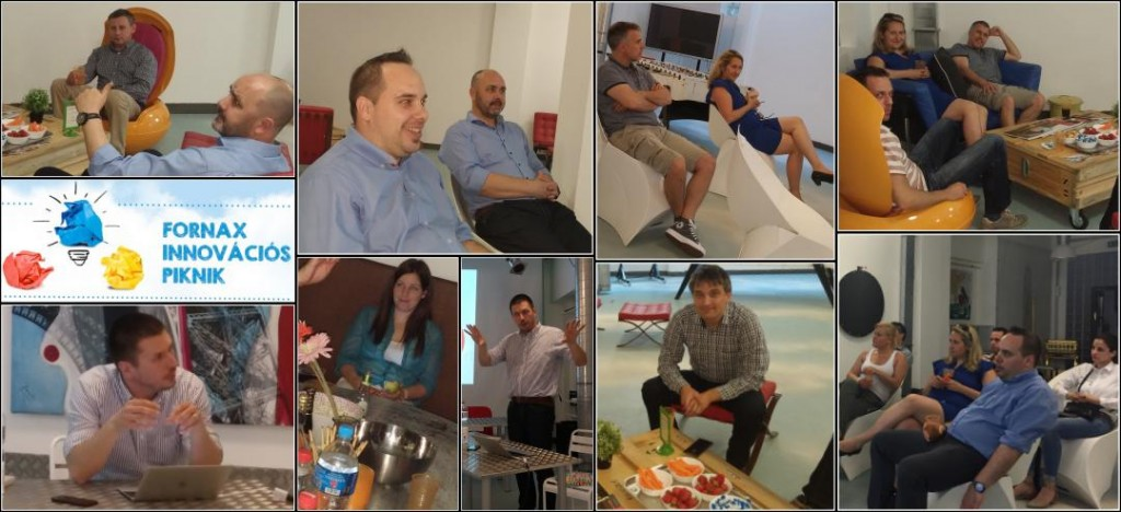Fornax Innovation Picnic – casual dialogue about our business